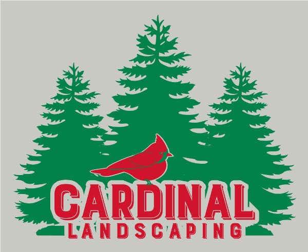 61699 Charles Ferrante- Cardinal Landscaping - Big back